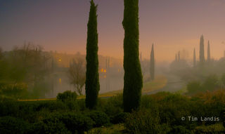 Clos du Lac, Fog cover in the moonlight, fog, glow, mist, moonscape, path