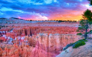Bryce, Bryce sunset, Utah, fire in the hoodooos, fire in the sky, hoodoo, hoodoo alpenglo, hoodoos, reflecting the dawn, technicolor, the glow, the glow in Bryce