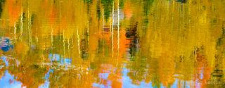 On golden pond, yellow and orange aspens
