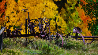 Antique road grader, machinery in the forest, wheels of progress