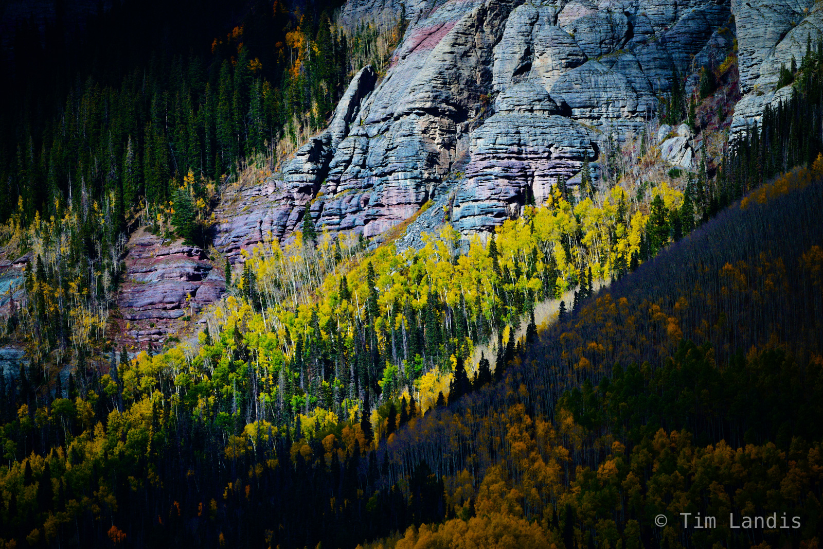 Cliffs above aspens, fall colors, rugged landscape, textures, photo