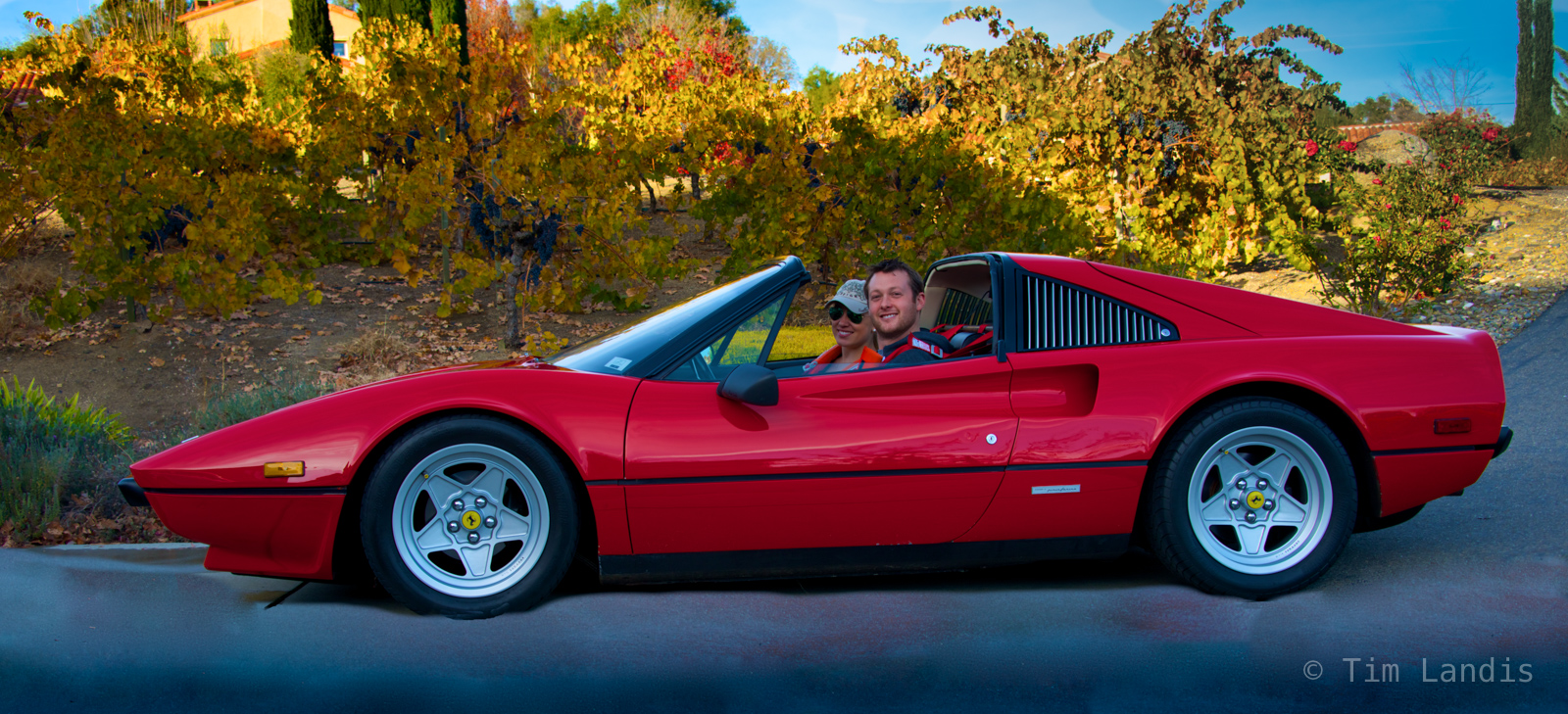 Ferrari in front of the vineyards in Northern California,driven by super models !