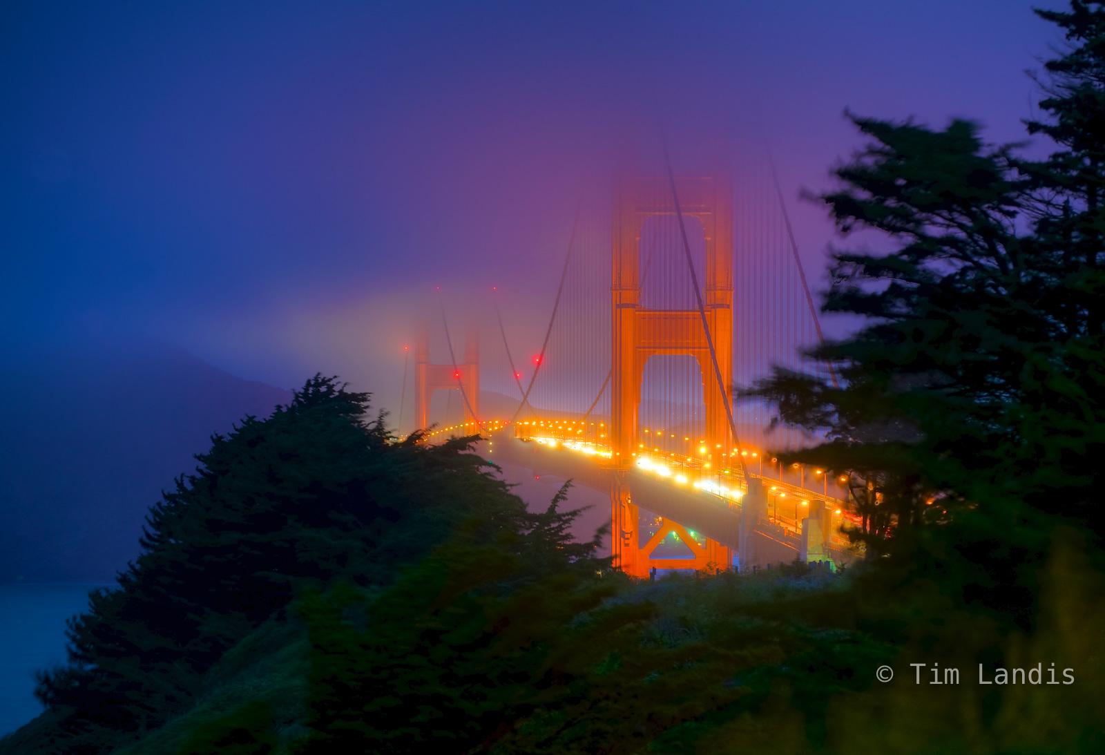 California, Golden gate bridge, fog., golden glow, magic hour, photo