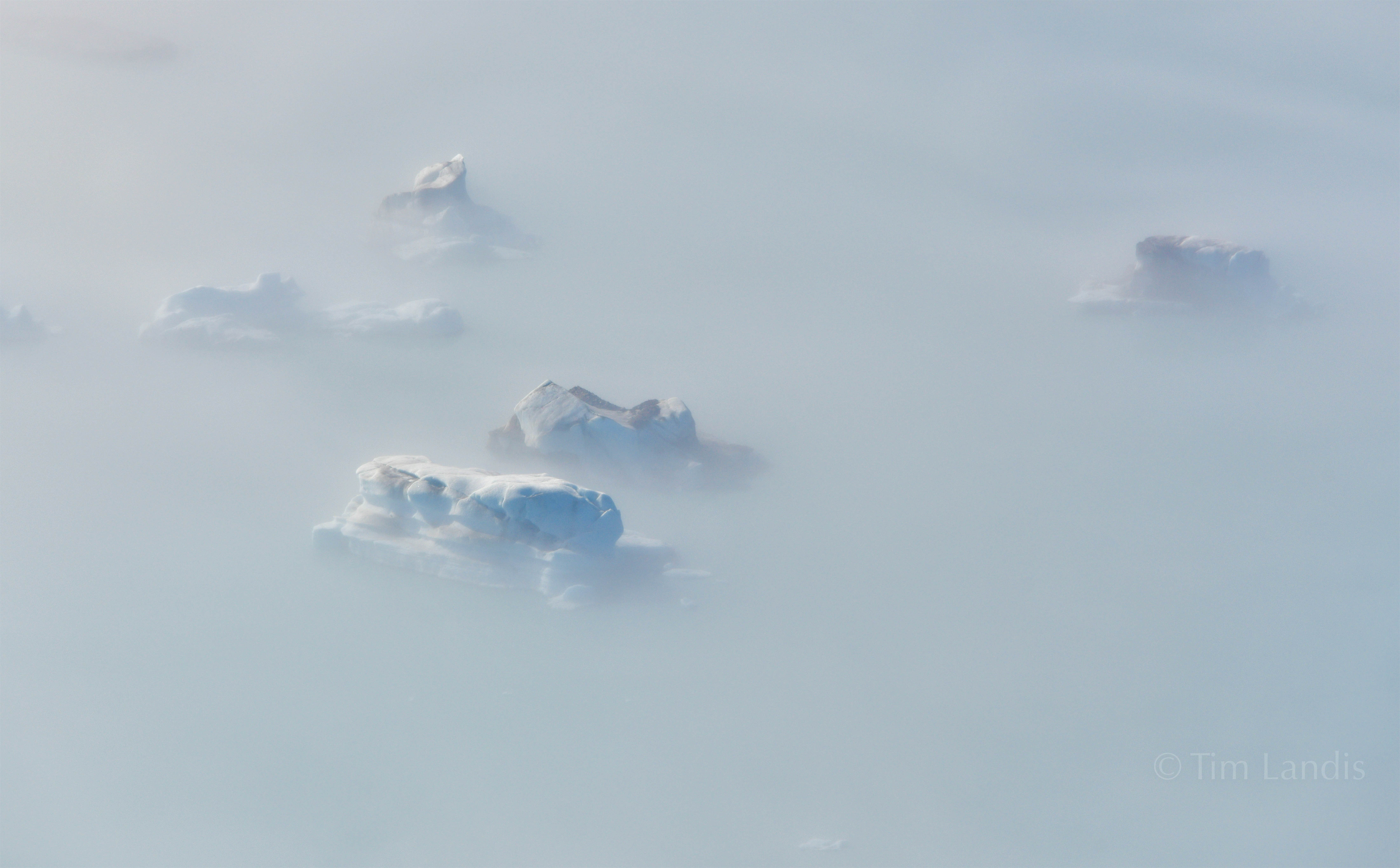 Alaska, icebergs in fog, photo