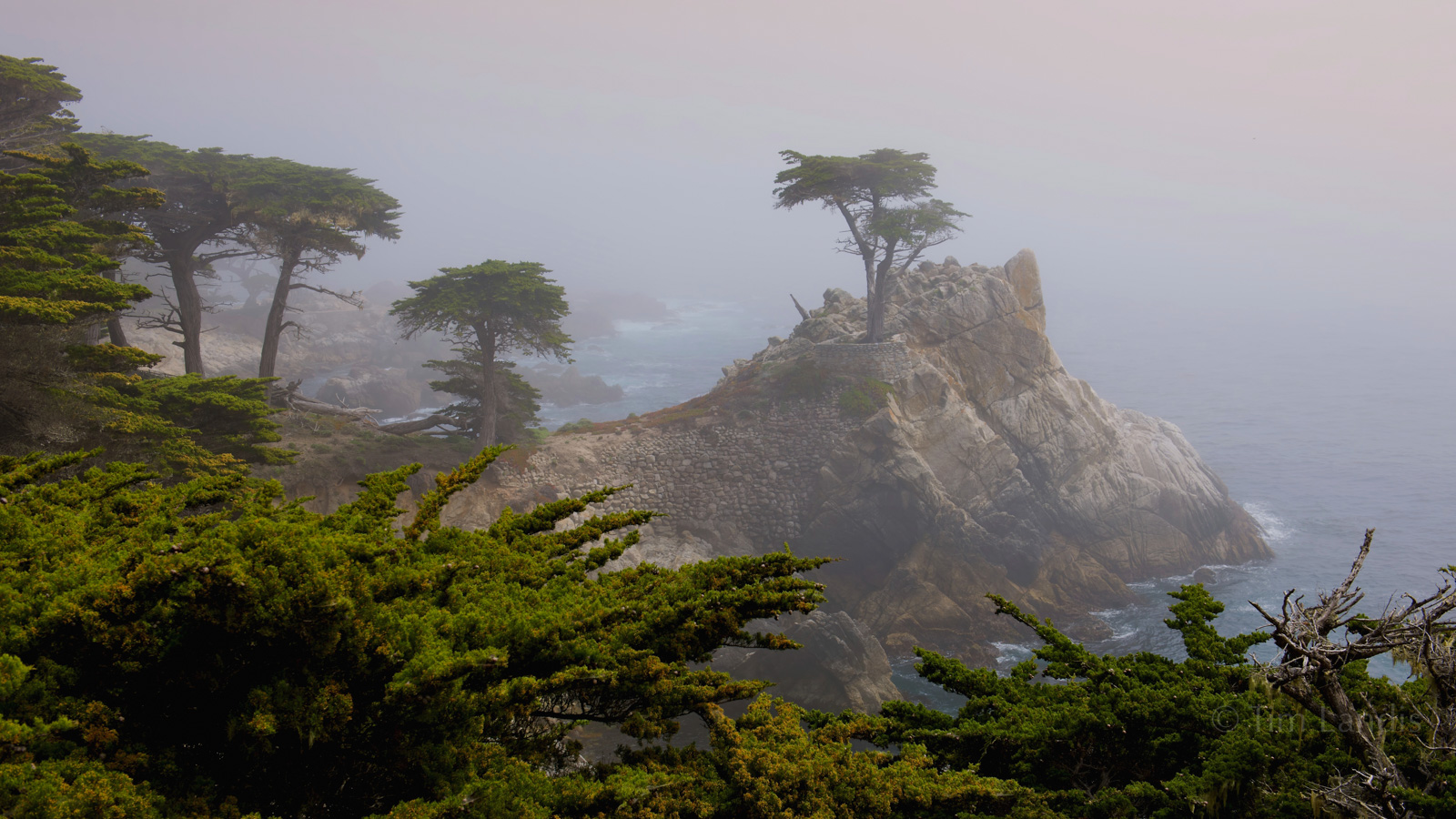 17 mile drive, California, Carmel, Carmel by the sea, Monterey, Pebble Beach, cyprus point, the point, photo