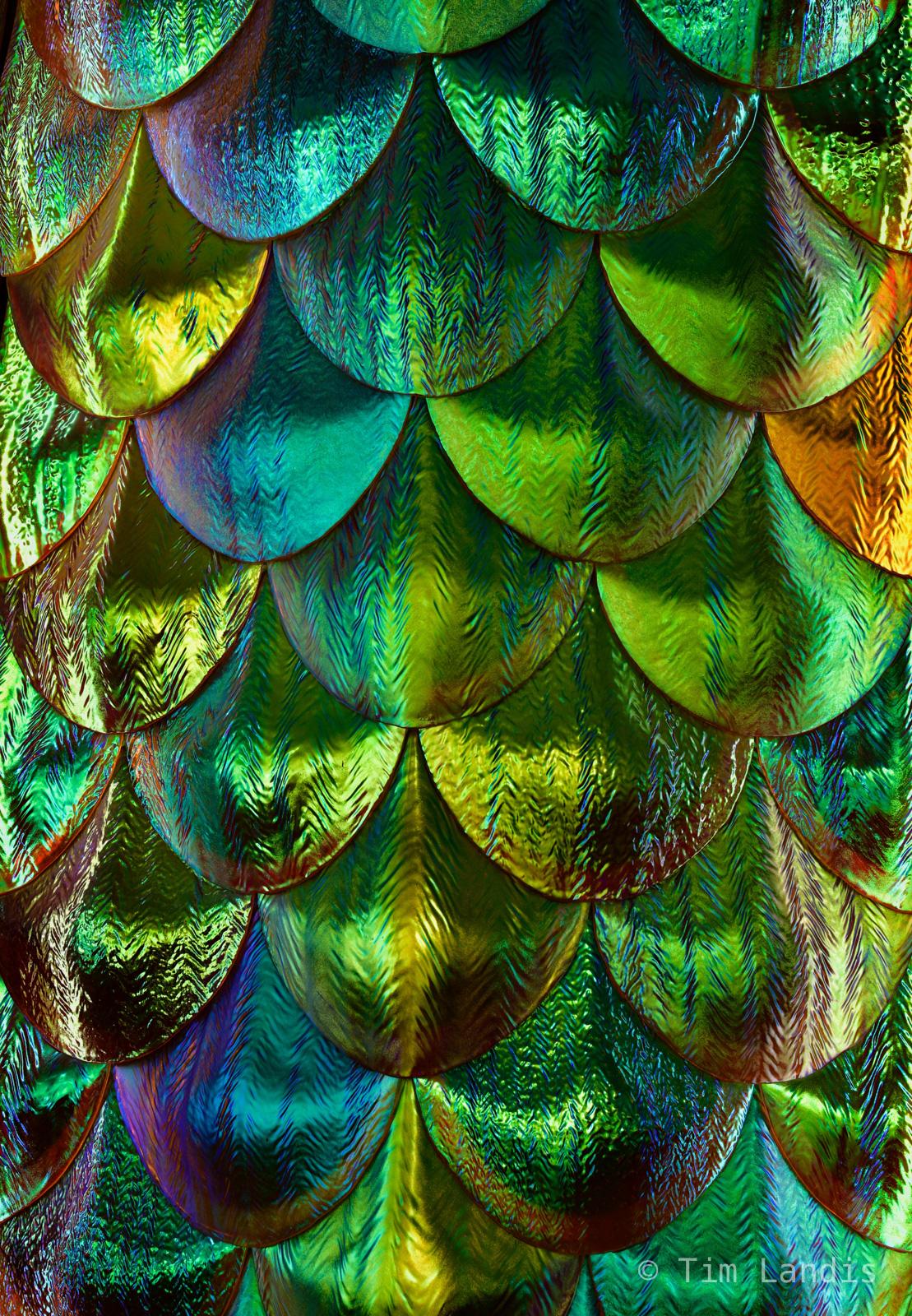 Mermaid scales, iridescent scales, photo