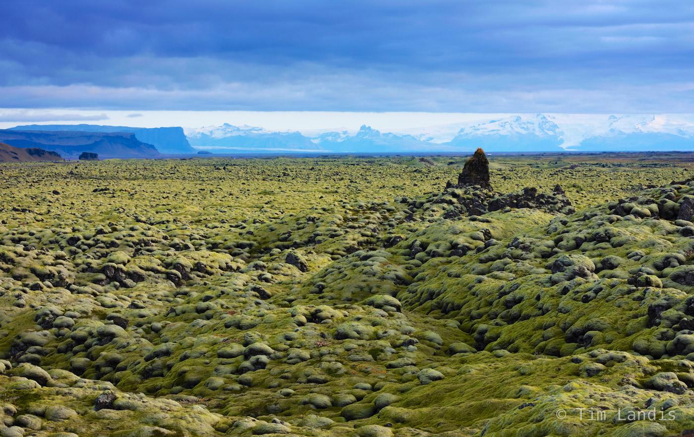 Moss landscape, lava fields, Iceland, photo