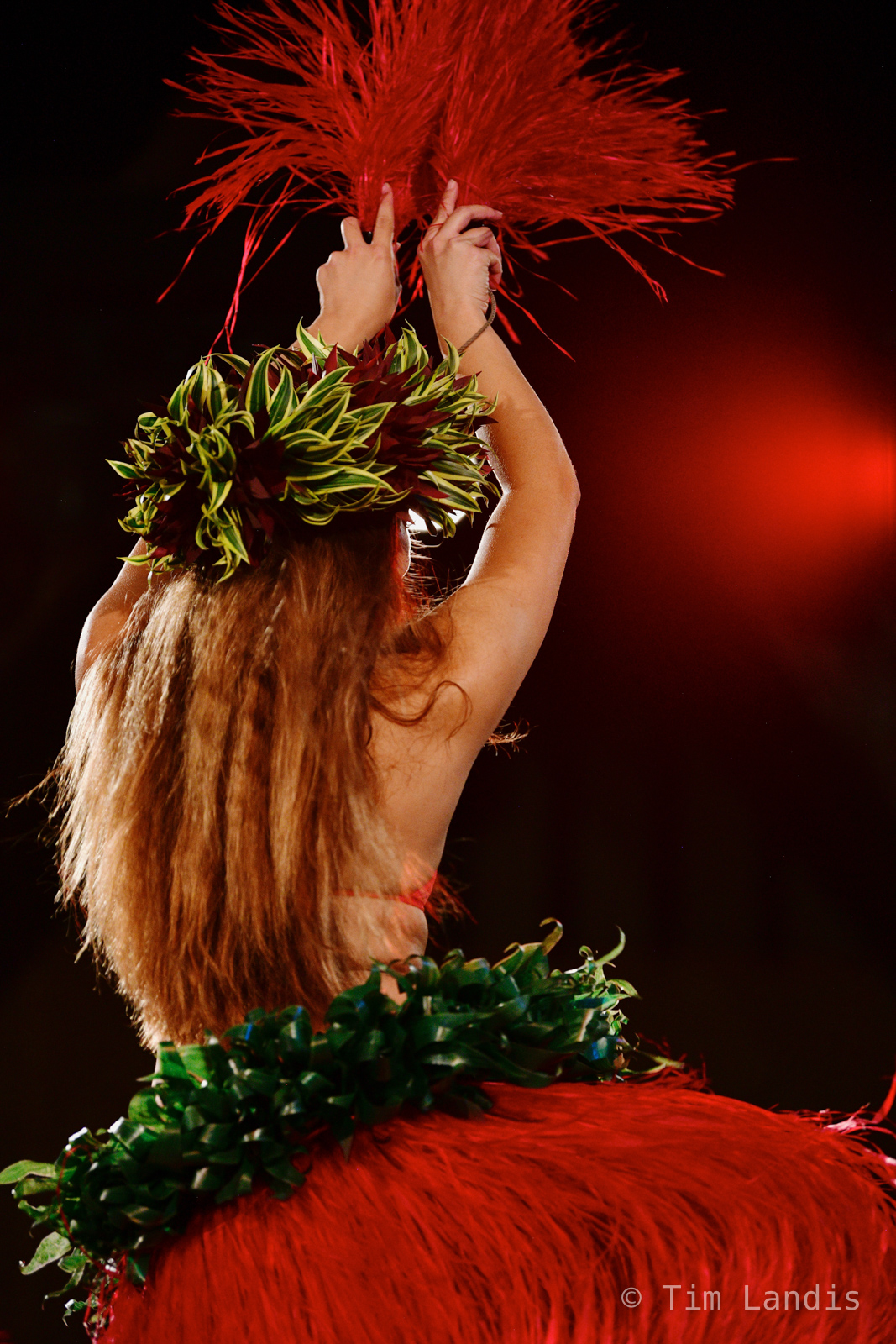 Hawaii, Luau, traditional dancer, photo